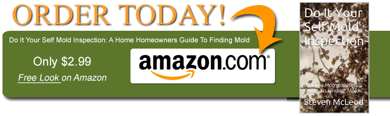 Do It Your Self Mold Inspection: A Home Homeowners Guide To Finding Mold